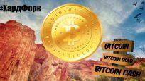 Как заработать биткоины без вложений?